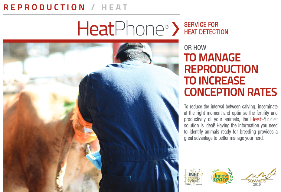 Heat Phone part 1